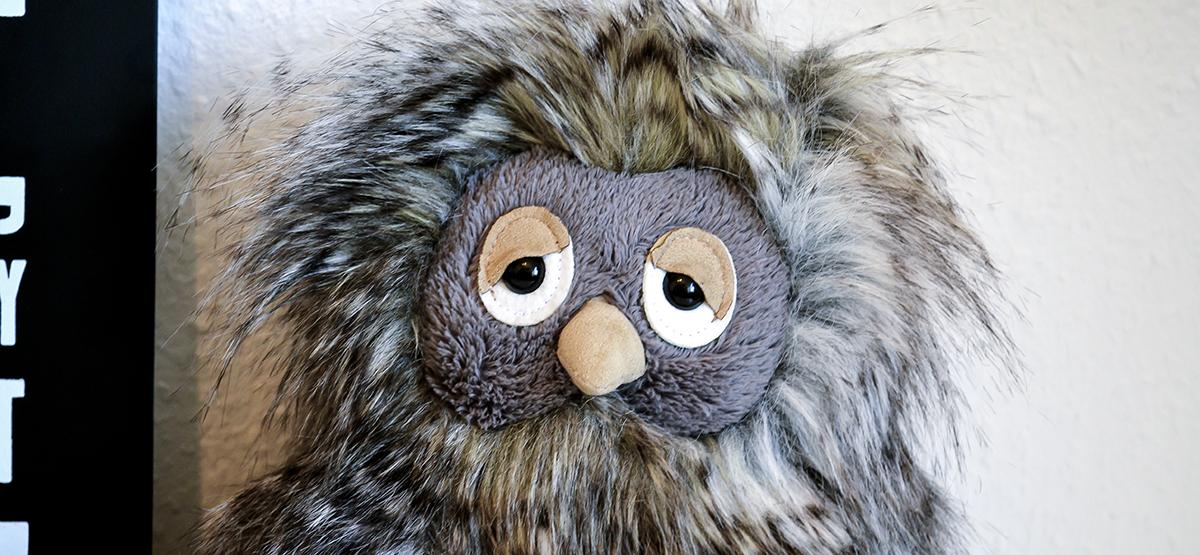 sød-pelset-ugle-1