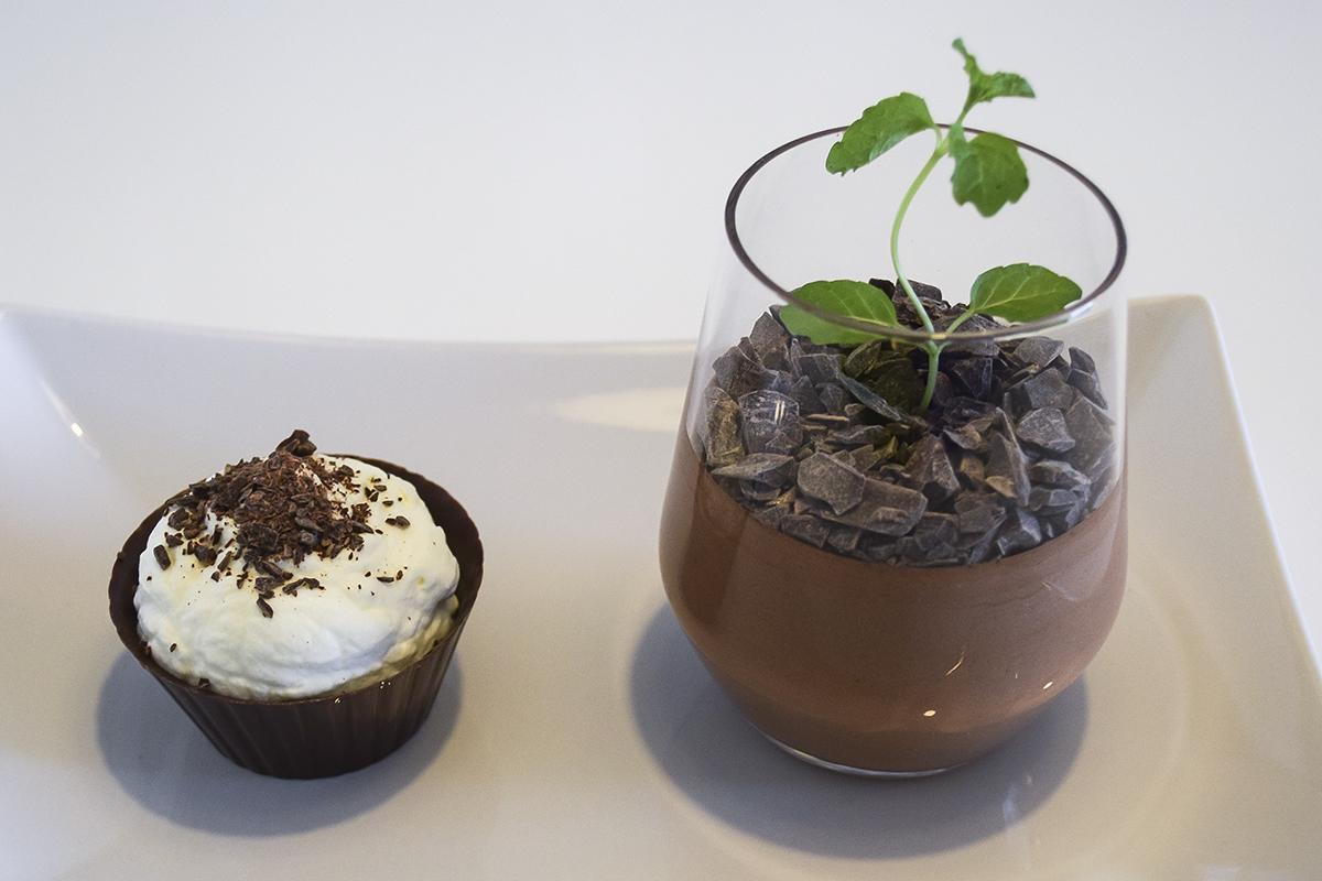 chokolademousse-som-plante-2